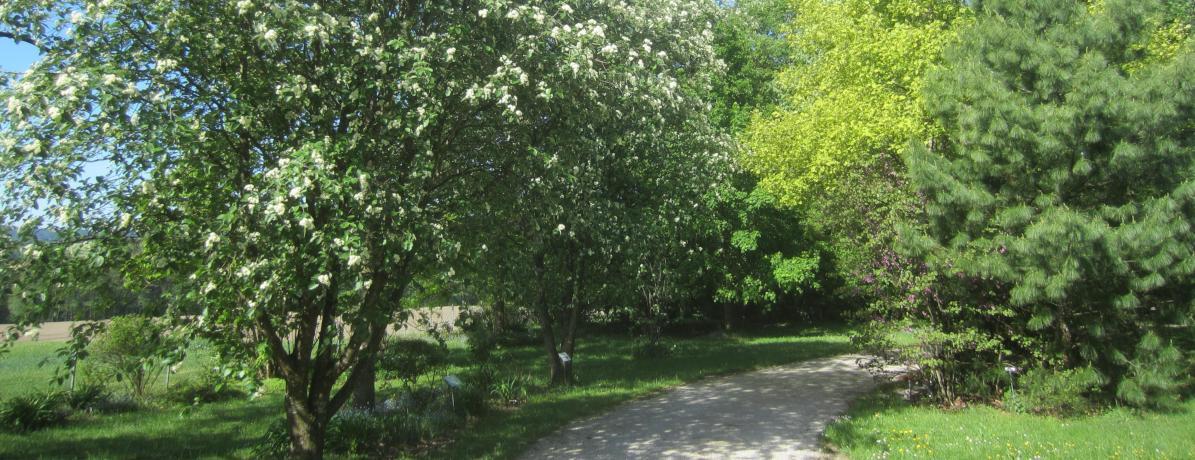 Der Botanische Garten in Frankenburg